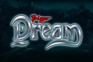 Bingo Dream
