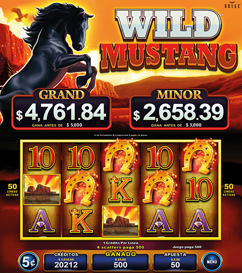 Video Slot - Multigame Standalone - Pick & Win - Wild Mustang