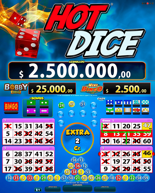 Video Bingo Hot Dice