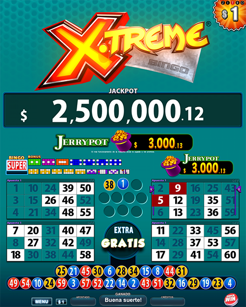 Video Bingo Xtreme