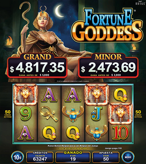 Video v- Multigame Standalone - Pick & Win - Fortune Goddess