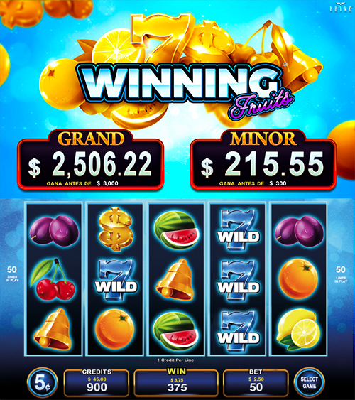 Video Slot - Multigame Standalone - Hot Deal - Winning Fruits