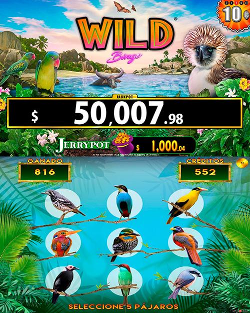 WildBingo_bonus