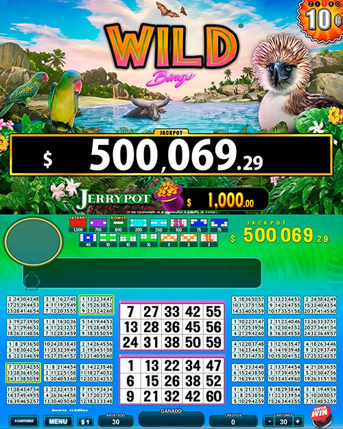 WildBingo_pantalla principal