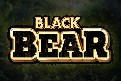Zitro Games - Video Slots - Multigame Standalone - Spin Hit - Black Bear