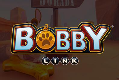 Link Bobby