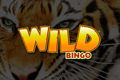 Wild Bingo