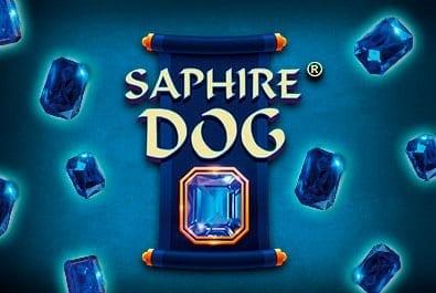 Saphire Dog